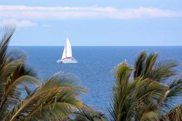 Luxury Catamaran Boat Tour of Big Island Coast, Hawaii