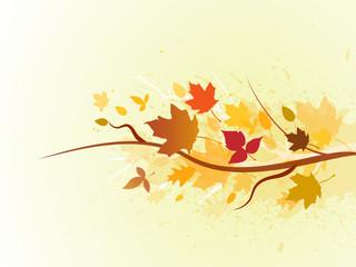 fall_Series_1