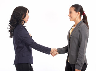 two beautiful colleague shaking their hands