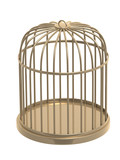 3d golden cage. Object over white poster