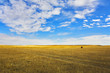The grandiose sky of Montana above the American prairie