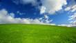 Beautiful Green Meadow in South Australia
