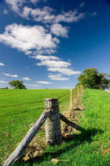 Country Australian Landscape