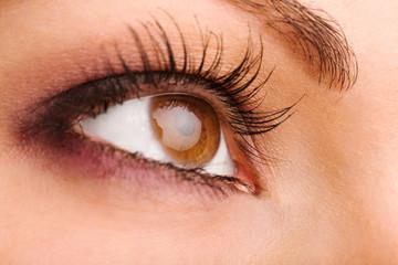 female wide open brown eye with long eyelashes macro