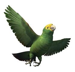 Double Yellow-Headed Amazon Parrot - 3D render