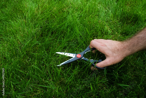 Somebody cutting the grass with a pair of scissors