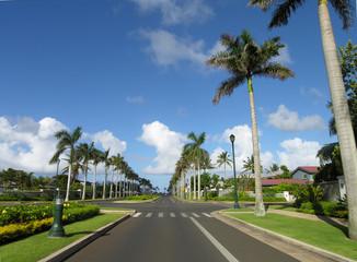 Hawaiian Road 2