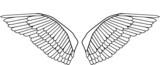 editable bird wings vector poster