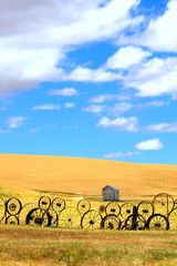 Wheat Fields and Old Wagon Wheel fence