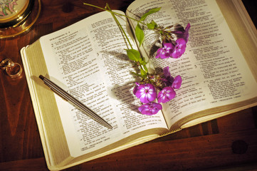Open Bible with flowers, pen, and wedding rings