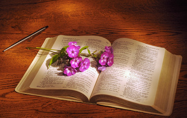 A spray of phlox lying across an open Bible
