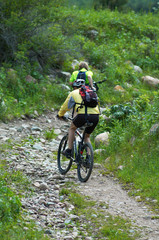 Mountain bikers uphill
