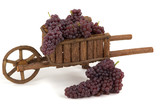 Gourmet champagne grapes poster