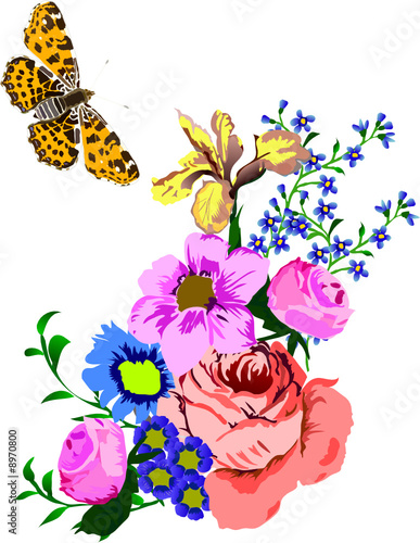 illustration with butterfly and flowers