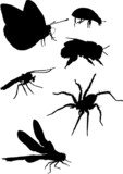 mosquito and other insect silhouettes poster