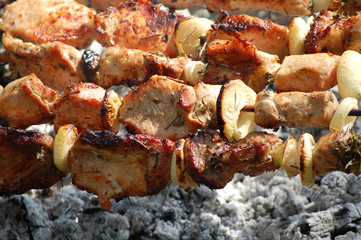 Pieces of pork shish kebab on skewers above ashes