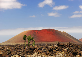 Landscape with the red volcano, blue sky and cactuses