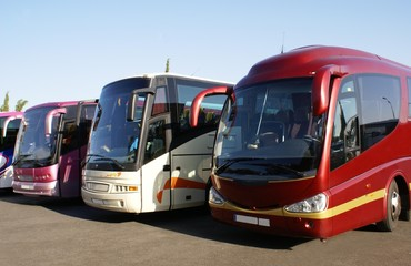 buses in car park