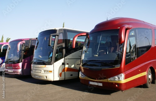 buses in car park