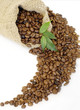 Coffee beans in the bag with green leaves easy to isolate