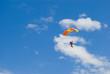The parachuter
