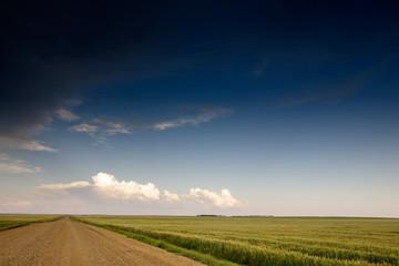 A road on a prairie landscape