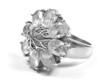 zirconium ring profile big ring on white isolated background