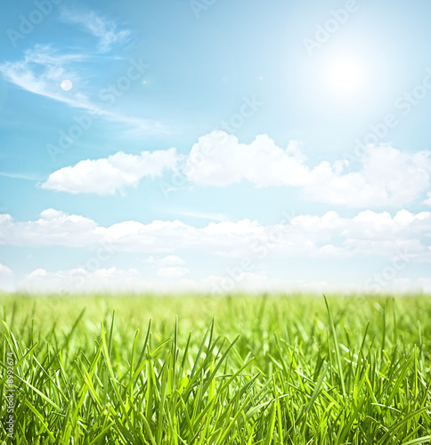 sky and grass - 8992674