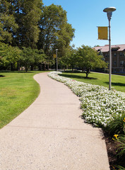 curving sidewalk on a college campus with flowers
