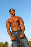 Young shirtless man poster