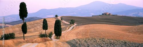 Weg zwischen Zypressen in der Toskana ab Monte Amiata