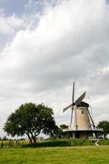 Landscape with Dutch windmill