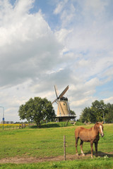 windmill and horse in Dutch landscape