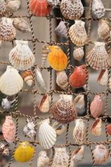 Sea souvenir