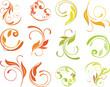 curled floral elements for design