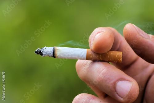 papieros en main, lubię vert