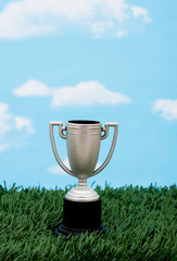 Trophy on grass , winning in your field of business