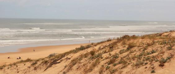 dune de bord de mer