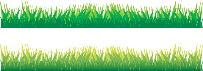 green grass on the white
