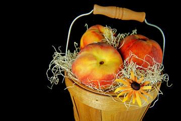 Peachy Susan