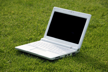 white laptop in nature
