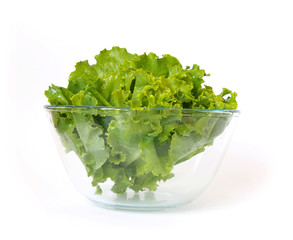 Fresh lettuce isolated on a white background