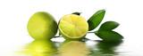 Fototapete Früchte - Zitrone - Obst