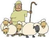 Sheep And Shepherd poster