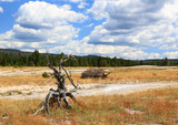 The scenery at Upper Geyser Basin in Yellowstone National Park poster
