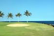 Golf Course on Lava Ocean Shore of Kona Island, Hawaii
