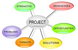 Project Management SWOT
