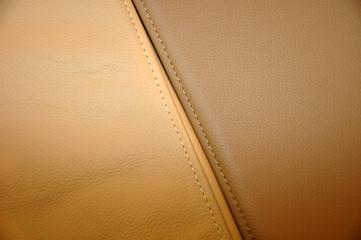 leather case II