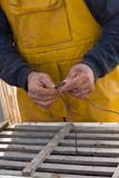 marin pêcheur poisson pêche noeud savoir faire hauturier côtier poster