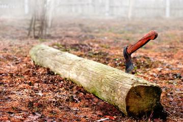 an axe stabbing log